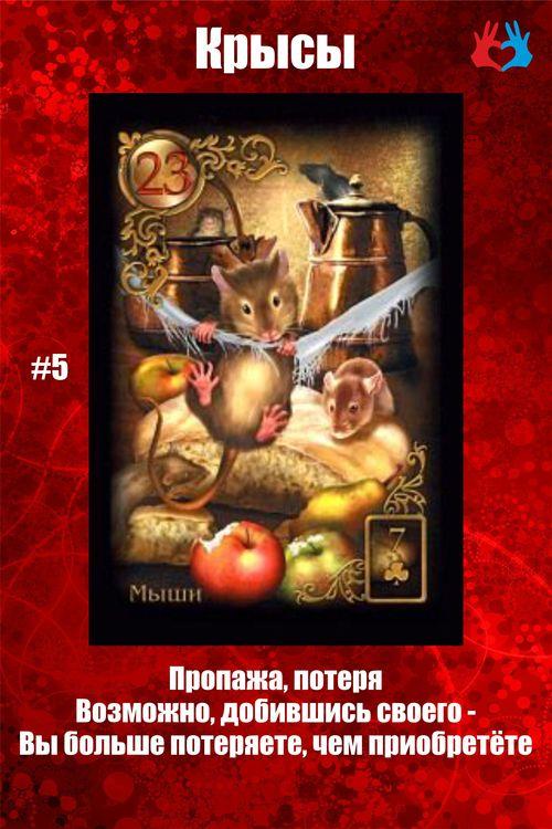 Карта #5 - Крысы
