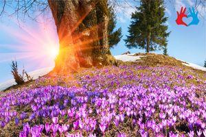 Особые дни марта - советы астролога