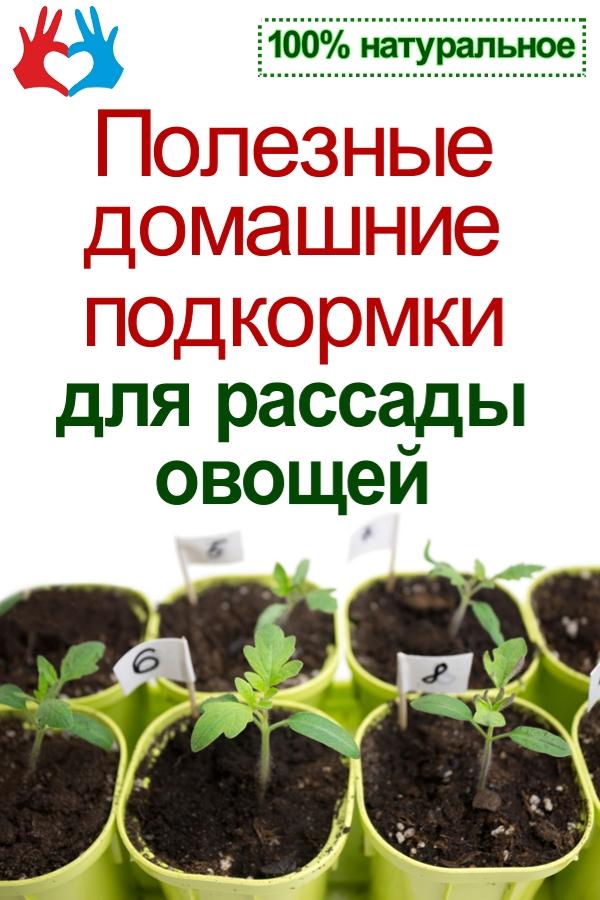 Три подкормки полезные для рассады овощей  https://gadanie-test.ru/