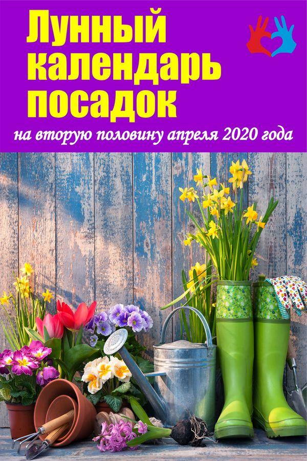 Лунный календарь посадок на вторую половину апреля 2020 года - https://gadanie-test.ru/