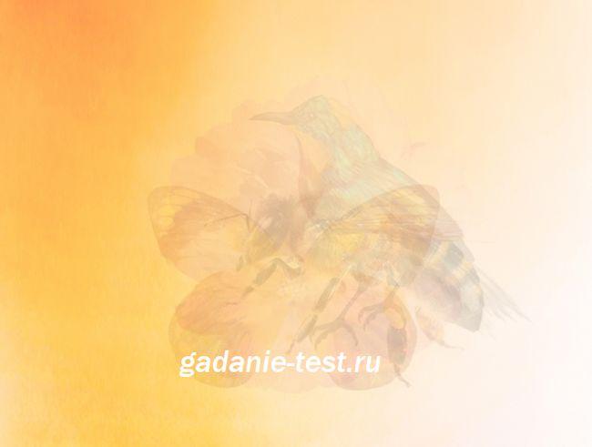Интуитивный тест - Что с вами будет этим летом? https://gadanie-test.ru/wp