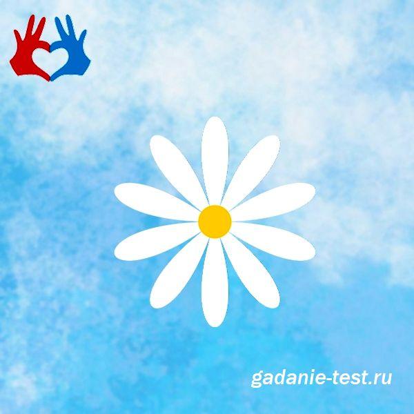 Тест на желание - Сбудется или нет в этом месяце https://gadanie-test.ru/wp