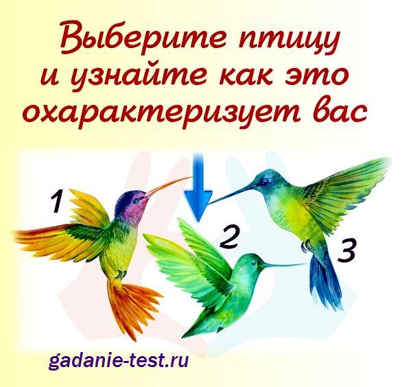 Тест личности - Выберите птицу https://gadanie-test.ru/