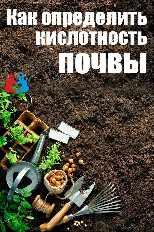 Как определить кислотность почвы - https://gadanie-test.ru/