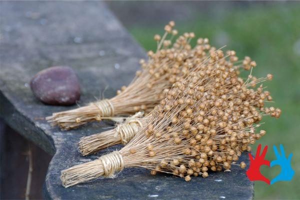 Семена льна, кунжута, подсолнечника - https://gadanie-test.ru/