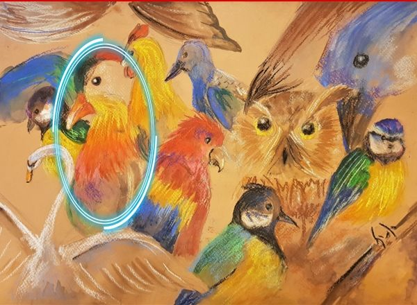 Птица 10