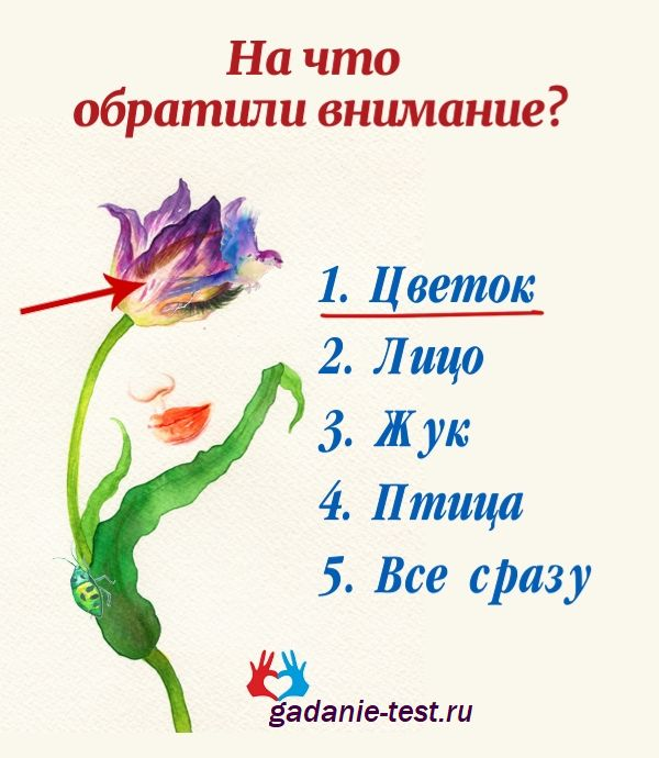 Цветок https://gadanie-test.ru/