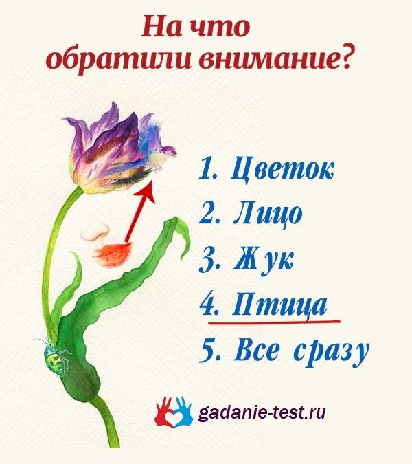 Птица https://gadanie-test.ru/