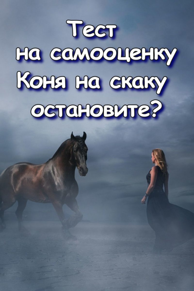 Тест на самооценку — Коня на скаку остановите?