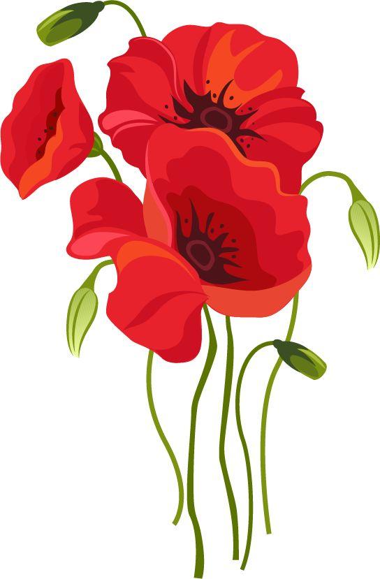 Быстрый тест на желание Цветок 1