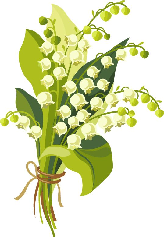 Быстрый тест на желание Цветок 2