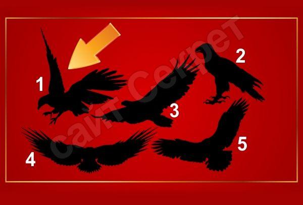 Тест на качество лидера - Выберите орла Орел 1