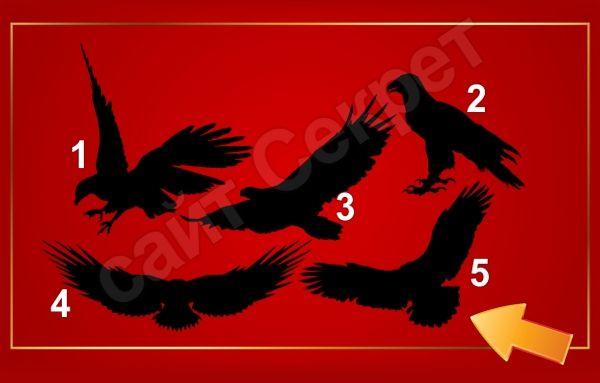 Тест на качество лидера - Выберите орла